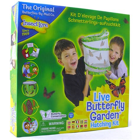 Butterfly Garden Kit by Insect Lore Live Butterfly Garden Hatching Kit Ebay