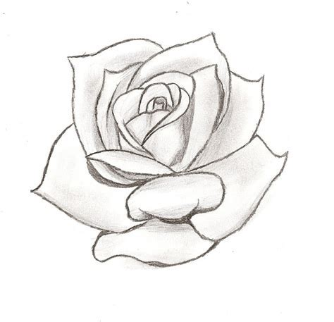 simple tattoo rose stencil cake ideas and designs