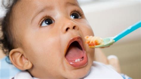 how many times should you feed a a day complementary feeding when do you start