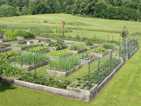 20 inspiring homestead farm garden layout and design ideas amzhouse wow that is a big garden but looks managable to awesome homesteading garden ideas