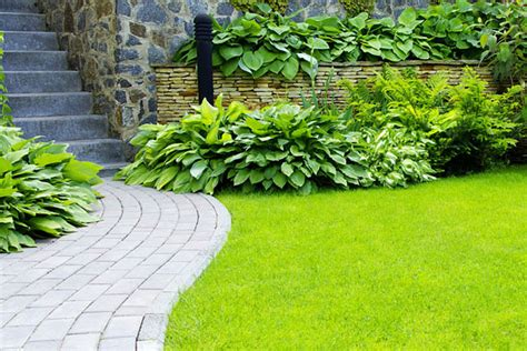 ground effects landscaping maintenance boone nc landscapers
