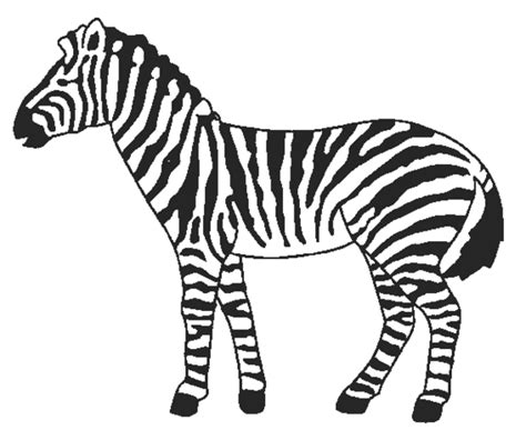 Coloring Page Zebra by Coloring Now 187 Archive 187 Zebra Coloring Pages
