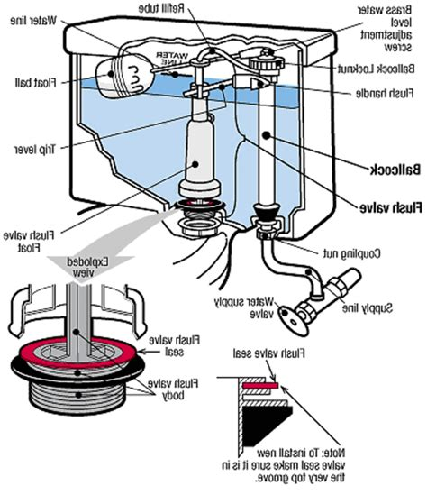 mansfield toilet diagram mansfield toilet repair jaiainc us