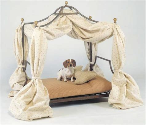 cat canopy bed 83 best pet bed cat dog images on pinterest dog cat