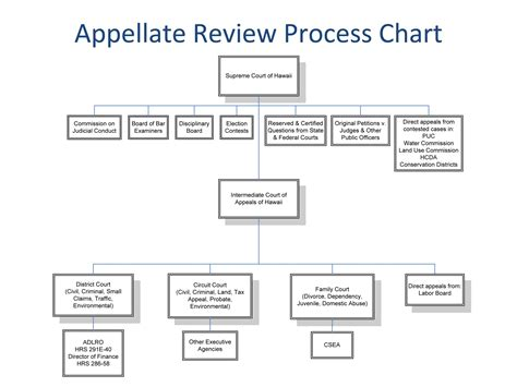 Appellate Search Court Appeals Process Images