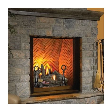 napoleon the direct vent wall mount gas fireplace