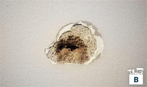 fix in wall repair a large in plaster wall premium box bauen diy home improvement