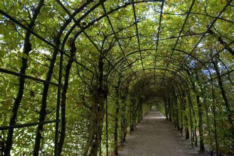 Garden Arch Perth Garden Arche Design Ideas Get Inspired By Photos Of