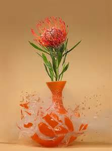exploding vases grower direct fresh cut flowers presents