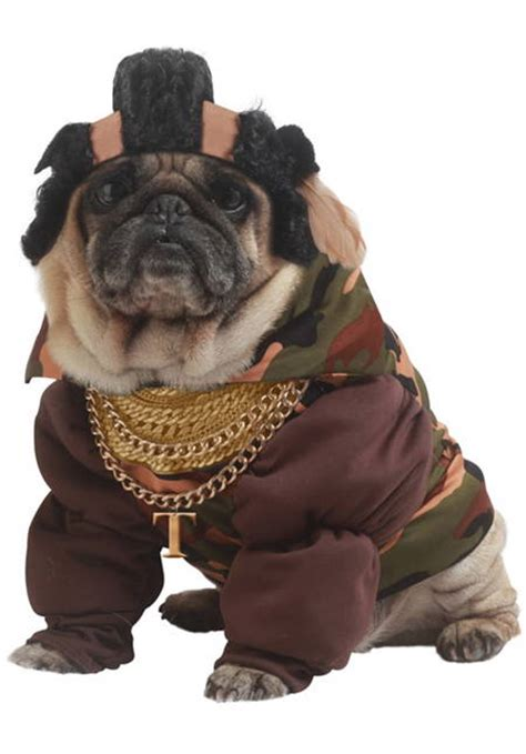 pug costume for child the best pug costumes known to