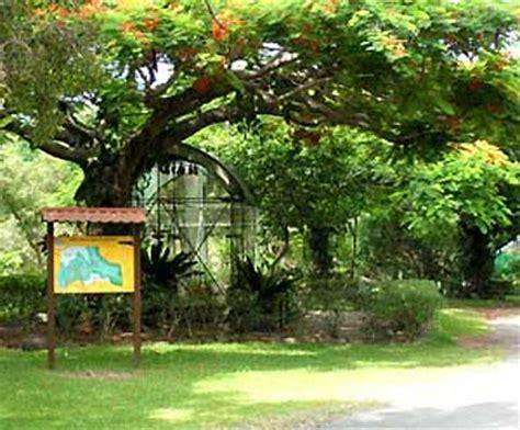le parc zoologique  forestier photo