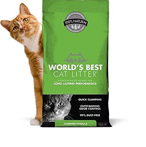 8 Best Cat by The 8 Best Cat Litter 2018 The Dear Lab