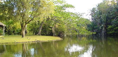Mauritius Botanical Garden Mauritius National Botanical Garden Mauritius Attractions