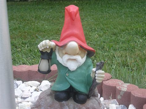 lawn gnome crazy lawn gnomes on pinterest garden gnomes gnomes and