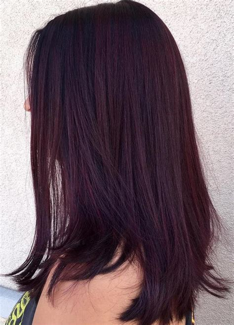 purple black hair color purple brown hair colors for 2018 best hair color ideas