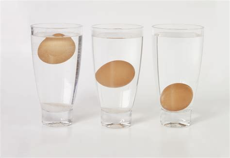 egg test water sink float why rotten eggs float scientific explanation