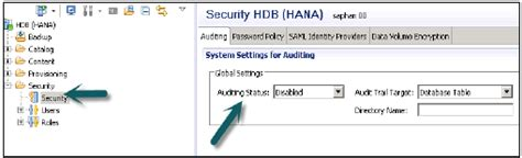 tutorialspoint hana sap hana auditing