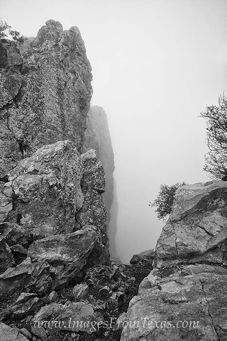 Fog on Emory Peak | Big Bend National Park | Images from Texas