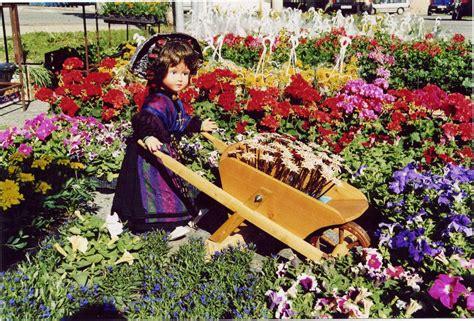 fiore commestibile doctor gourmeta e i fiori commestibili doctor gourmeta