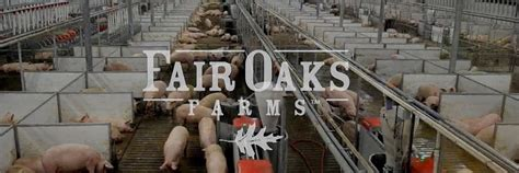 Chicago Mba Visit Cus by Georgetown Mbas Visit Fair Oaks Farms Metromba
