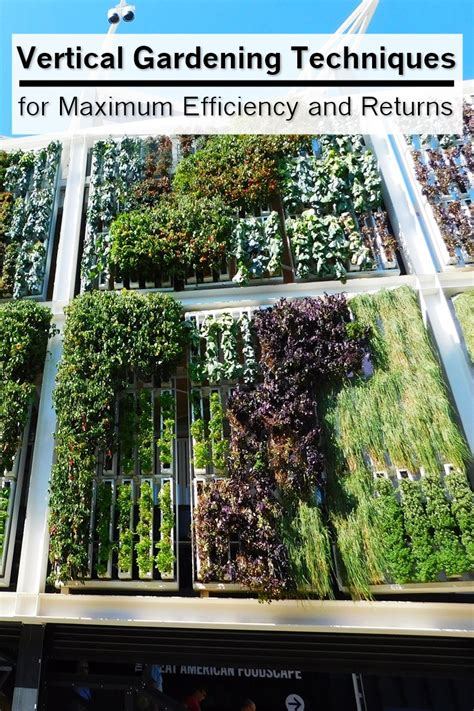 Vertical Gardening Techniques Vertical Gardening Techniques For Maximum Efficiency And