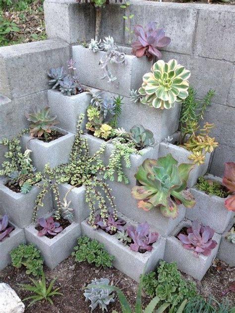 Succulents Garden Ideas Creative Indoor And Outdoor Succulent Garden Ideas 2017