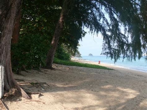 swiss cottage tioman picture of swiss cottage tioman tekek tripadvisor