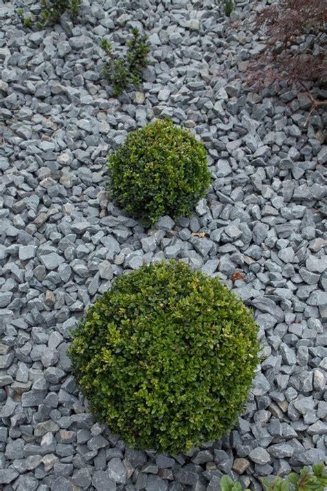 anlegen steingarten gartengestaltungsideen steingarten anlegen mit passender