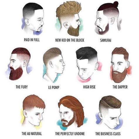 hair and head types men s hair cuts and beard chart man bun mustache beard
