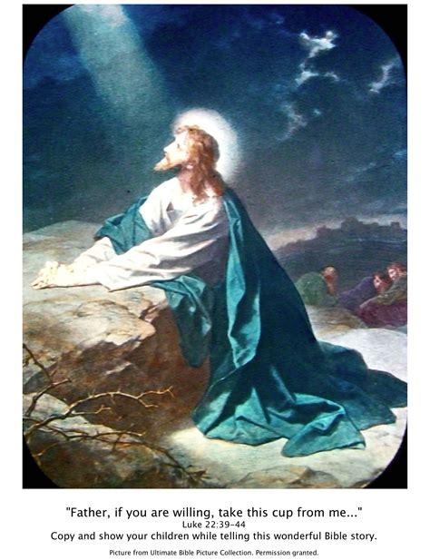 bible story pictures jesus   garden  gethsemane