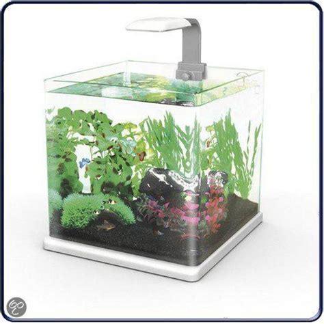 Aquarium L 25 Liter bol superfish qubie aquarium 25 liter antraciet