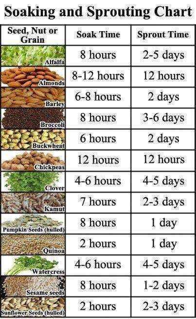 What Vegetables Grow On A Trellis Seed Soaking And Sprouting Chart Realfarmacy Com
