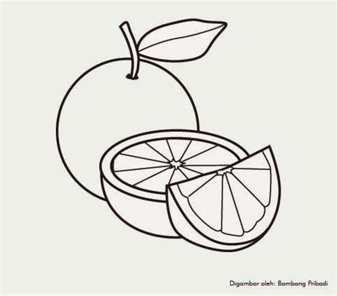 koleksi gambar mewarnai buah jeruk