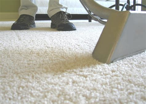 rug cleaners rochester ny carpet cleaning rochester ny eco clean