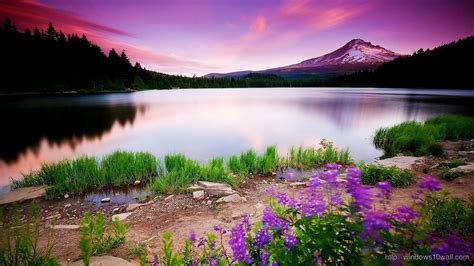 Colorful Nature Hd Wallpaper   windows 10 Wallpapers