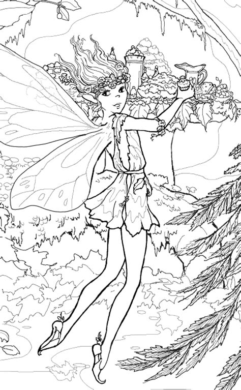 fairies more volume 2 line coloring book books interactive magazine beautiful coloring