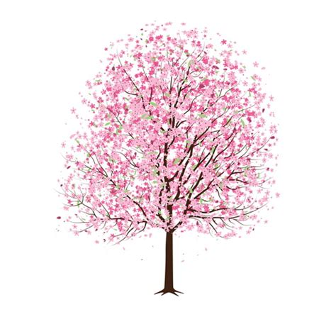 cherry tree vector cards dragonartz designs we moved to dragonartz net