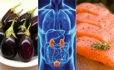alimenti aiutano i reni cosa mangiare in caso di sindrome colon irritabile