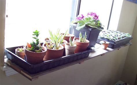 Window Sill Planter Indoor by Pallet Wood Window Sill Plant Shelf