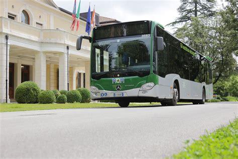 treviso mobilit 224 di marca assume conducenti autobus web