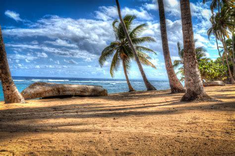 luxury beachfront vacation rental in dominican republic
