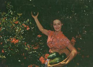 african american skin disorders fort lauderdale vintage travel postcards flamingo groves botanic garden