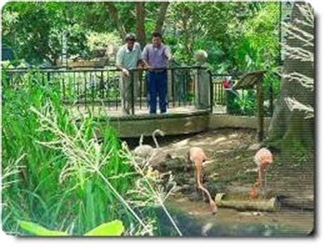 entrada zoológico barranquilla viajes diversion y turismo zoologico de barranquilla
