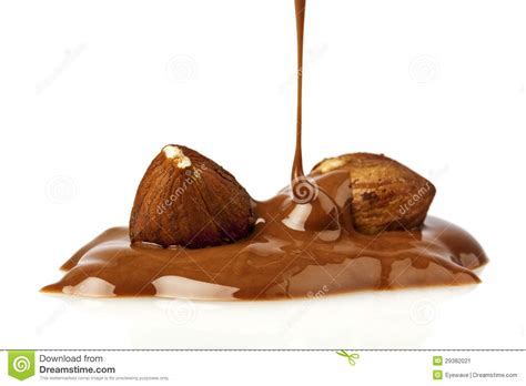 Liquid Chocolate Mr Milt liquid chocolate and hazelnuts stock image image 29382021