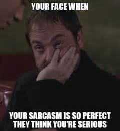 Sarcastic Meme Face - when people don t get my sarcasm the meta picture