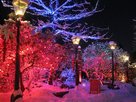 christmas lights snow street image 249603 on favim com