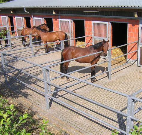 stall bochum pony pferdeboxen auf der reitanlage strunk innenbox mit