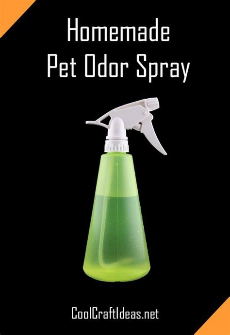 homemade dog shoo for good smell 17 best images about everyday solution insect pest