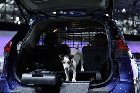 nissan car for dogs nissan shows rogue dogue car for owners in n y auto show upi