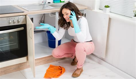 Most Common Plumbing Repair Jobs and Why You Should Call a Plumber in Arlington, TX